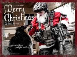Weihnachts- und Neujahreswünsche 2017
